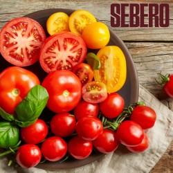 Sebero – Tomato (Себеро...