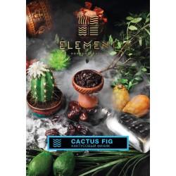 Cactus Fig (Кактусовый...