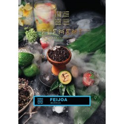 Feijoa (Фейхоа) Element...