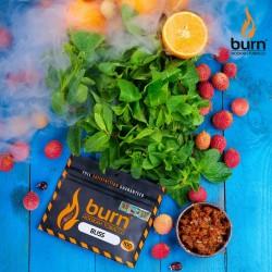 Burn - Bliss (Личи) 100 гр,...