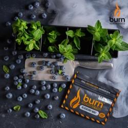 Burn - Blueberry Mint (Мята...