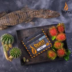 Burn - Cactus (Кактус) 100...