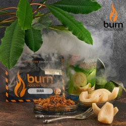 Burn - Guava (Гуава) 100...