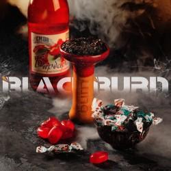 Black Burn - Barberry Shock...